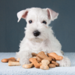 Kép 1/2 - Hun Dog duo-mix csont alakú száraztáp kutyáknak 10kg - sonka-kolbász